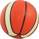 Cosco Pulse Basketball