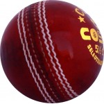 Cosco Club Cricket Leather Ball