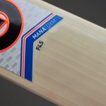 GM Mana 444 English Willow Cricket Bat