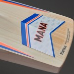 GM Mana 555 English Willow Cricket Bat