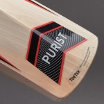 GM Purist 909 English Willow Cricket Bat