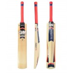 GM Purist Striker Kashmir Willow Cricket Bat