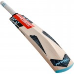 Gray Nicolls Supernova GN1 Junior English Willow Cricket Bat