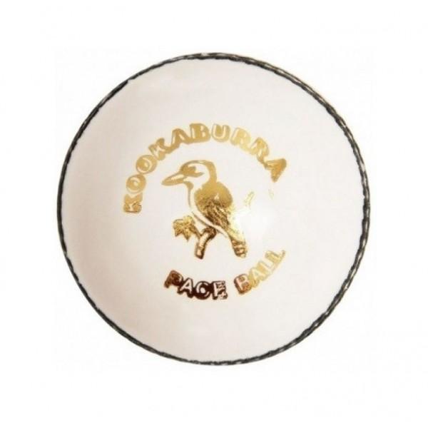 Kookaburra Paceball White Cricket Leather Ball