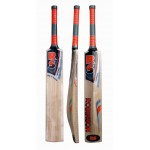RS Robinson Duke of Windsor Kashmir Willow Cricket Bat (SH)