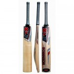 RS Robinson Recorder Kashmir Willow Cricket Bat (SH)