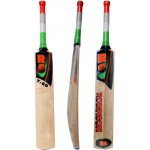 RS Robinson T-20 English Willow Cricket Bat (SH)