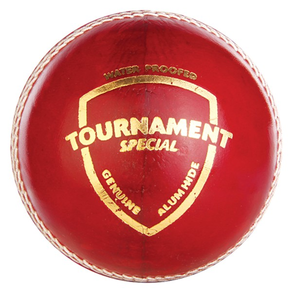 SG Tournament Special Cricket Leather Ball