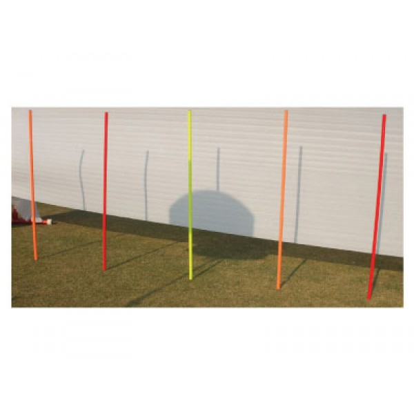 STAG Slalom Pole Elementary (Set of 6)