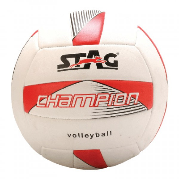 STAG Volley Ball Champion