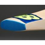 New Balance DC 480 Kashmir Willow Cricket Bat (SH)