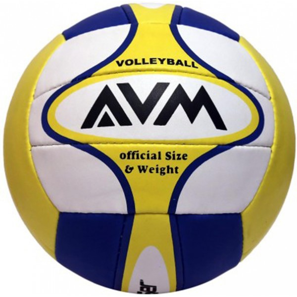 AVM Leaser Volleyball