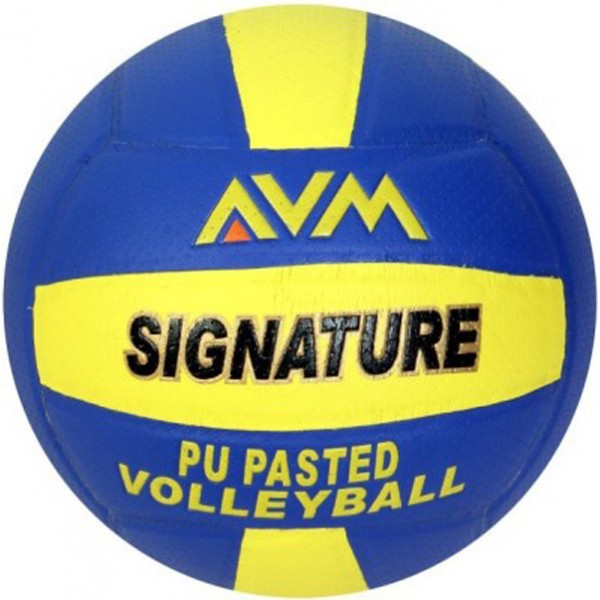 AVM Signature Volleyball