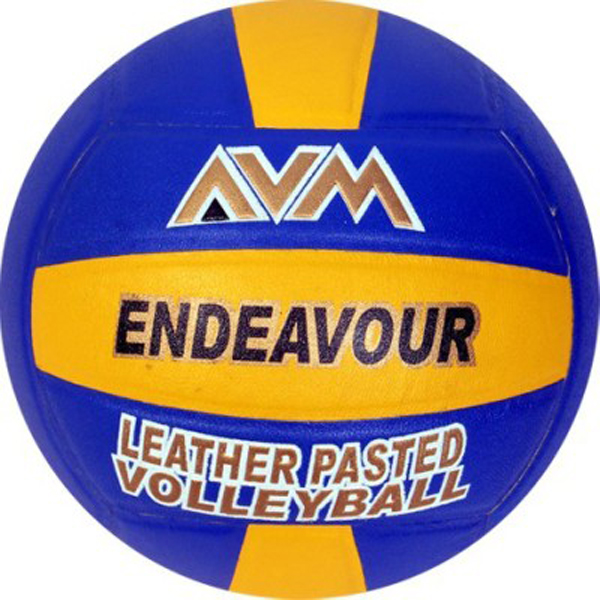 AVM Endaveour Volleyball