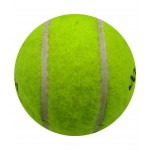 Wasan Cricket Tennis Ball
