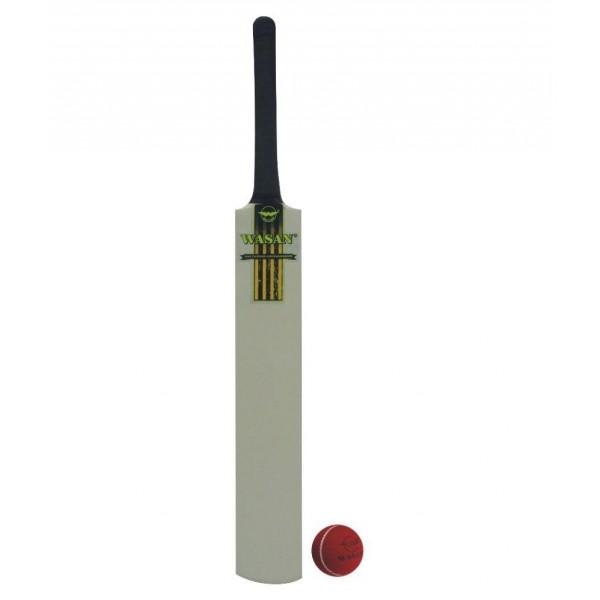 Wasan Bat and Ball Size 5 Cricket Kit